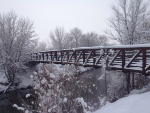 SLC bridge