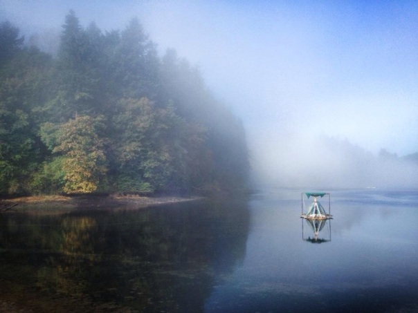 Pitched tent in the foggy Lake.  Olalla, WA