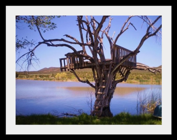Page Ranch Tree House