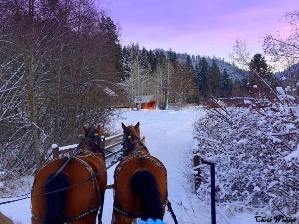 sleigh ride 3