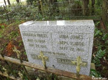 Housel Jones