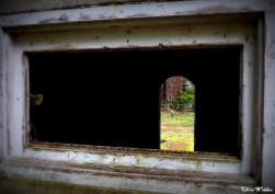 mausoleum window