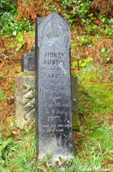 Sidney Austin