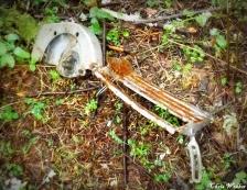 skeletal skillsaw